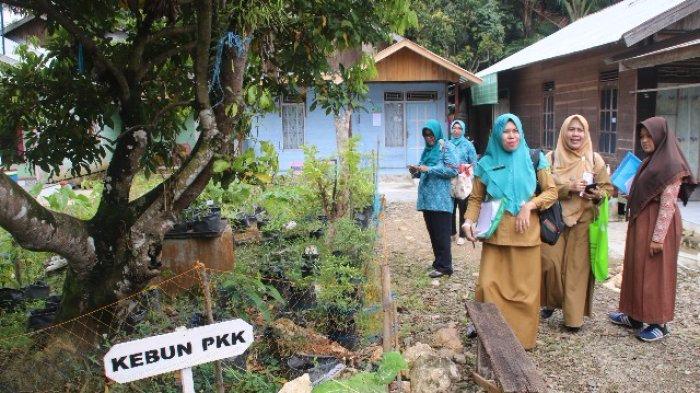 Dinas Ketahanan Pangan Tabalong Beri Dana Rp 50 Juta Dua Desa Ini untuk Manfaatkan Pekarangan